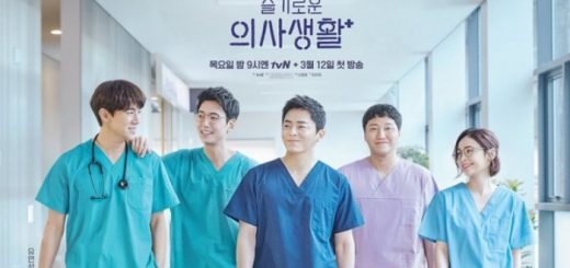 poster phim Hospital Playlist